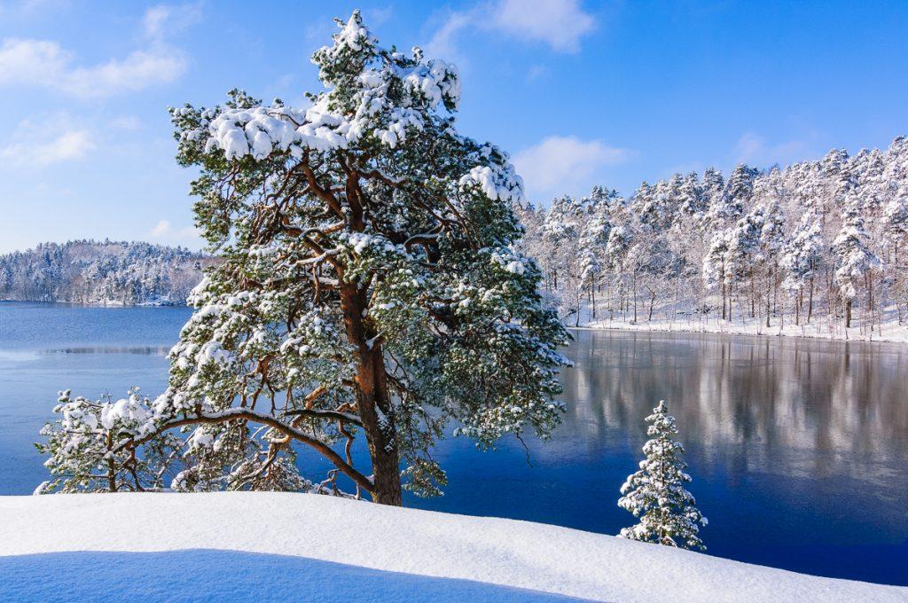 Delsjöområdet i vinterskrud
